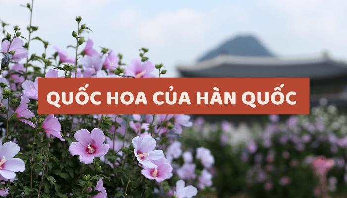 quoc-hoa-cua-han-quoc